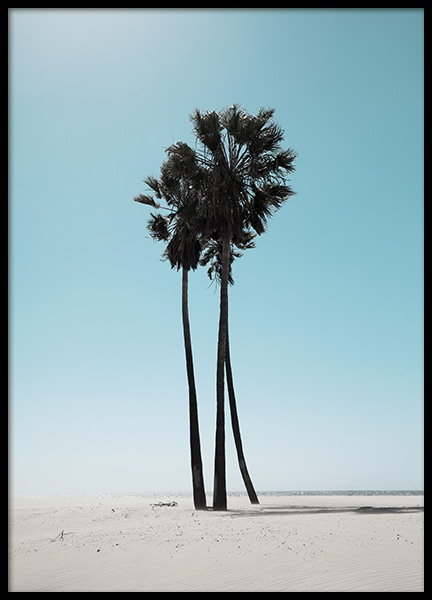 LA Beach Palms Affiche dans le groupe Studio Collections / Studio Coast to Coast / Los Angeles chez Desenio AB (10784)