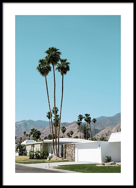 Street of Palm Springs Affiche dans le groupe Collections Studio / Studio Coast to Coast / Palm Springs chez Desenio AB (10790)