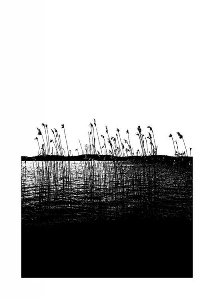 Reed in the Sea Affiche dans le groupe Affiches / Nature chez Desenio AB (11219)