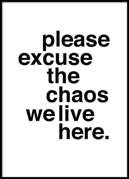 Please Excuse The Chaos Affiche dans le groupe Affiches / Affiche citation chez Desenio AB (2479)