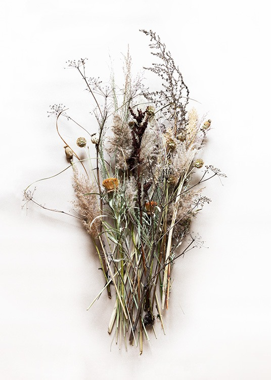 Dried Bouquet No1 Affiche / Photographie chez Desenio AB (11796)