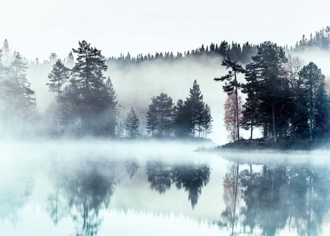 Foggy Lake Affiche / Nature chez Desenio AB (2720)