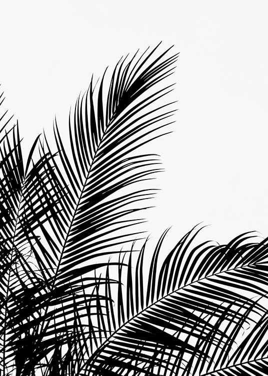 Black Palm Tree Two Affiche / Noir et blanc chez Desenio AB (3524)