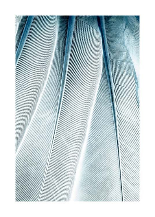 Feathers Close Up Affiche / Photographie chez Desenio AB (3539)
