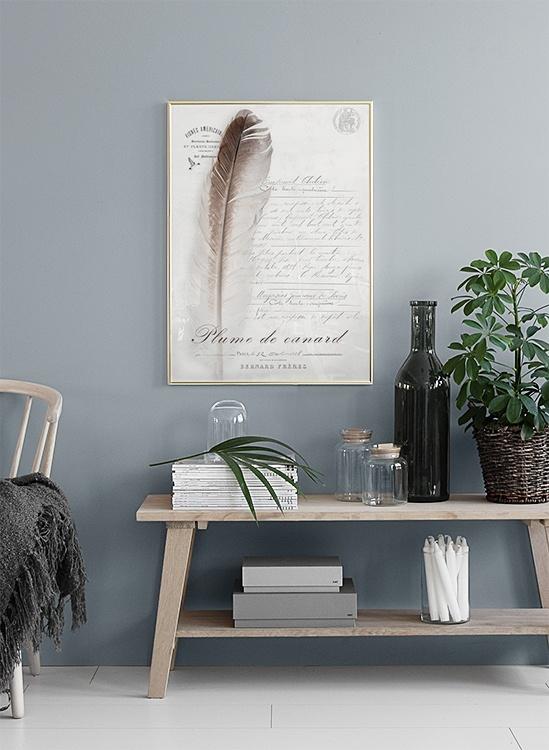 Affiches De Style Shabby Chic Joli Affiche Avec Plume
