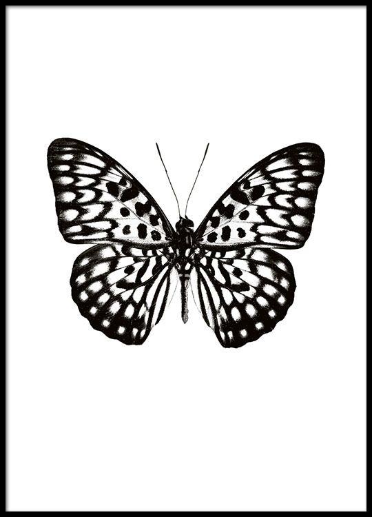 poster affiche avec papillon noir et blanc affiche. Black Bedroom Furniture Sets. Home Design Ideas