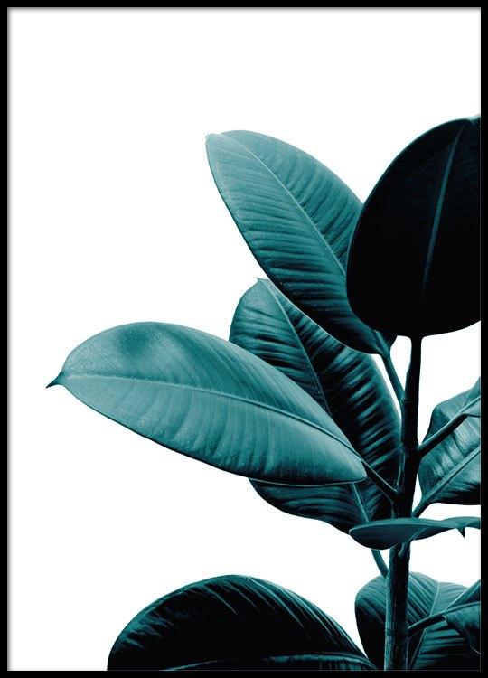 affiche botanique avec plante poster avec photo desenio. Black Bedroom Furniture Sets. Home Design Ideas